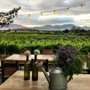 Baja's Backcountry Wine Wonderland