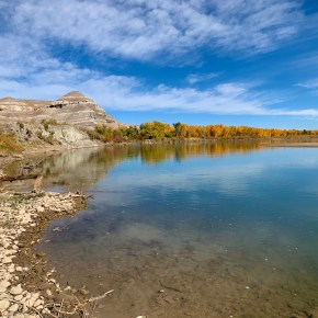 Birding Paradise at Ouray National Wildlife Refuge near Vernal, Utah