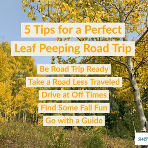 5 Tips for a Perfect Leaf Peeping Road Trip