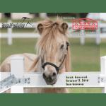 2019 SWFHR Calendar orders available!
