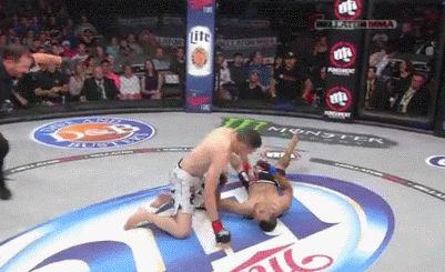 Steve Garcia New Mexico MMA