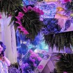 Looking Glass Interactive Gallery Opens in Fort Myers | Arts