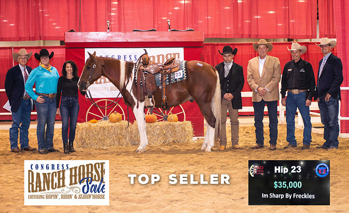 High Seller at the 2021 Congress Ranch Horse Sale