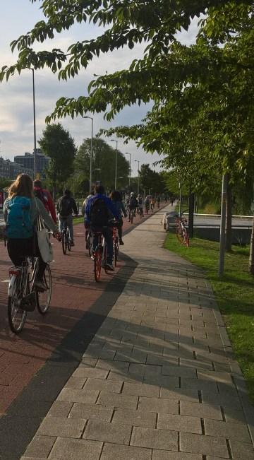 Delft - ścieżka rowerowa