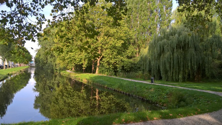 Delft - Ogród Botaniczny