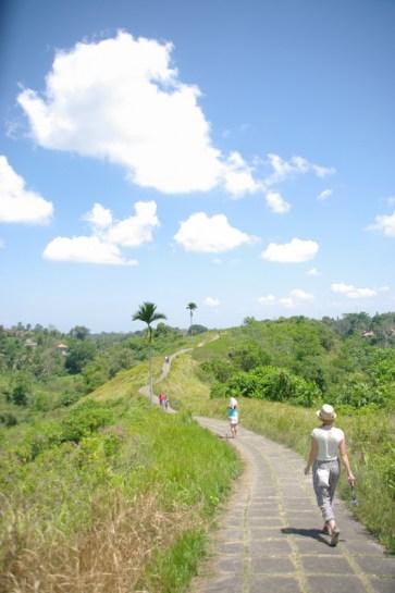 imgp0151 - Indonezja, cz. II Bali, Ubud