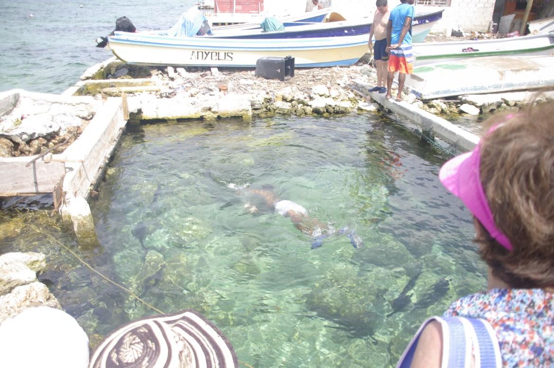 igp2745 - Isla Mucura - raj w Kolumbii