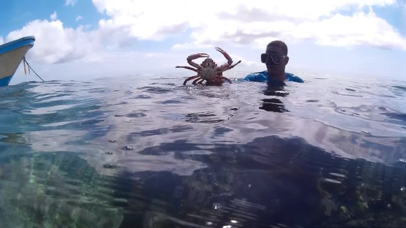 snorkelling2 - Kolumbia - Cartagena de Indias, Isla Mucura