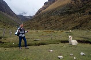 20181011 20181011 pa110374 - Machu Picchu szlakiem Salkantay Na Własną Rękę - krok po kroku
