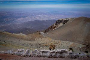 20181028  A280098 300x200 - Chachani w Peru, czyli nasza droga na 6.000