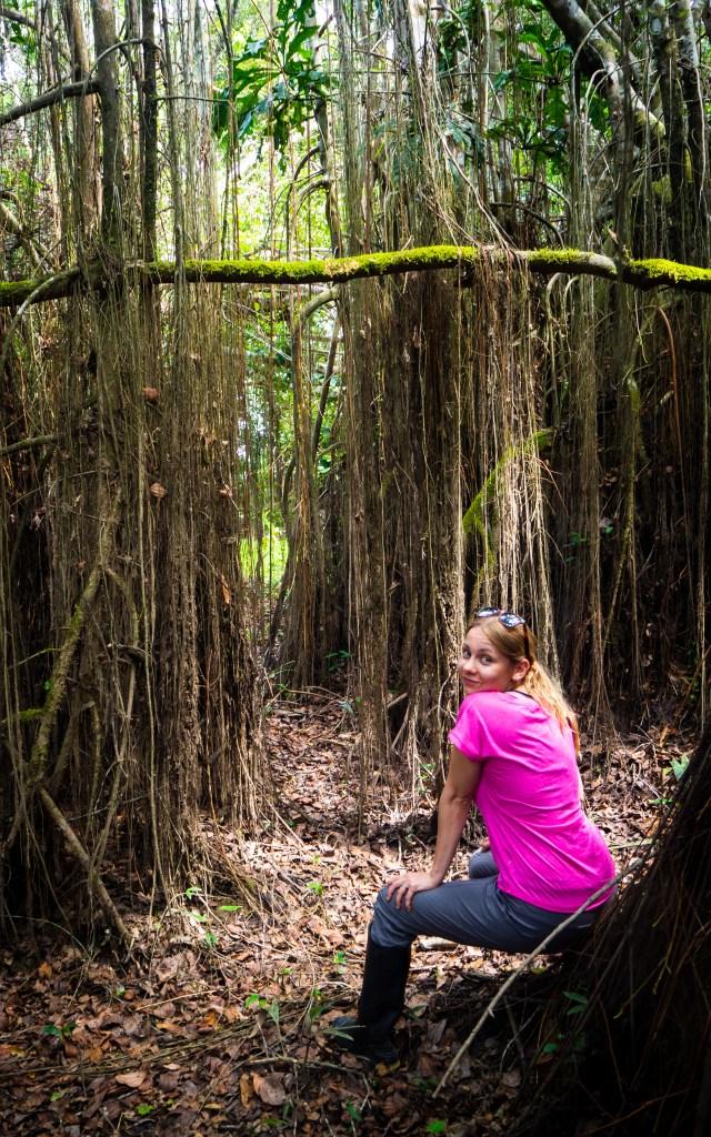 20181105  B051450 640x1024 - Amazońska dżungla w Peru