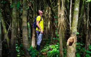 20181105  B051461 300x188 - Amazońska dżungla w Peru
