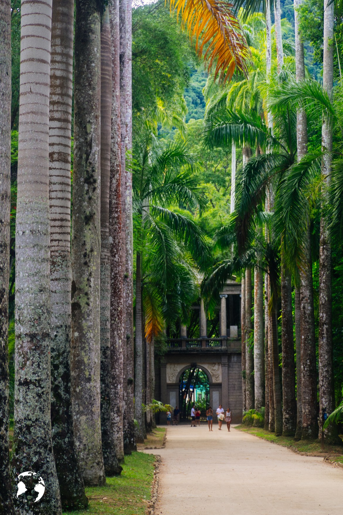 20190104  1040076 1 - Rio de Janeiro - wybitne połączenie miejskości i natury