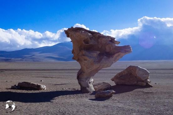 20190219  2191478 - Salar de Uyuni, czyli nasze spełnienie marzeń