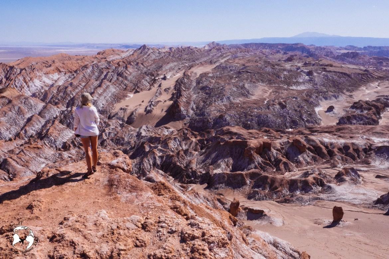 WhatsApp Image 2019 05 28 at 12.39.47 1 - Pustynia Atacama - gotowy plan i koszty podróży