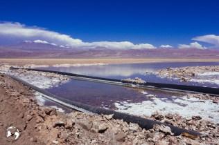 WhatsApp Image 2019 05 28 at 12.42.41 - Jak zaplanować wyjazd na pustynię Atacama?