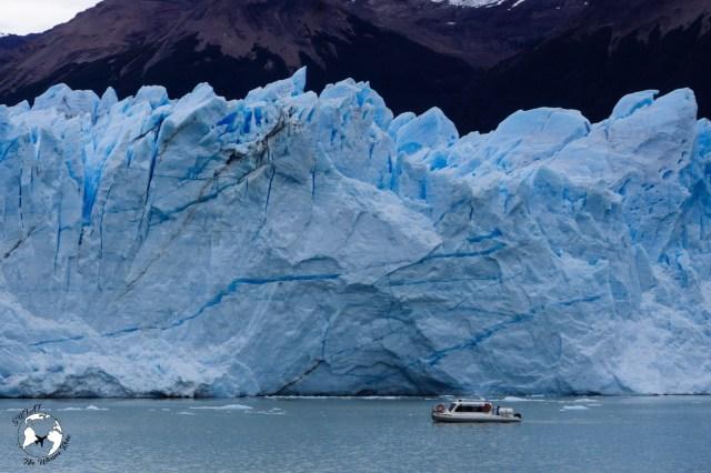 WhatsApp Image 2019 05 29 at 10.50.13 1 - Perito Moreno - niezwykły lodowiec w Patagonii