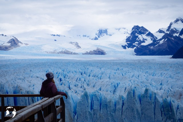 WhatsApp Image 2019 05 29 at 10.50.14 - Perito Moreno - niezwykły lodowiec w Patagonii