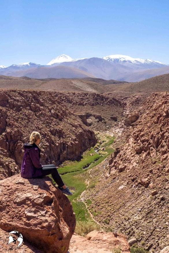 WhatsApp Image 2020 01 23 at 11.56.22 - Pustynia Atacama - gotowy plan i koszty podróży