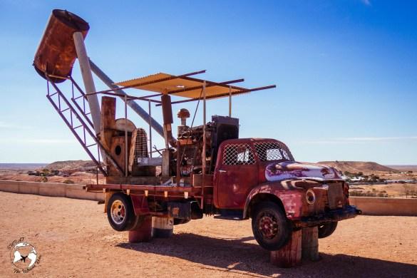 WhatsApp Image 2019 06 11 at 16.07.15 - W sercu australijskiego kontynentu - z wizytą na Outbacku!