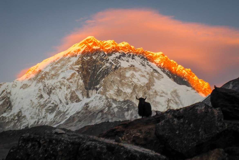 WhatsApp Image 2019 11 26 at 21.29.48 1 - Himalaje na własną rękę - trekking na EBC