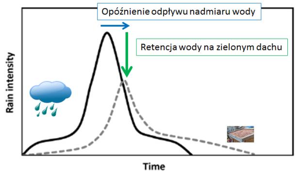 retencja-opadu_2