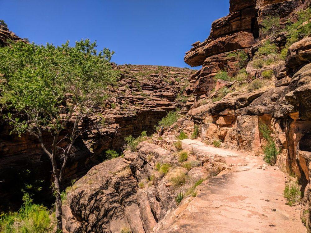 Grand Canyon - zdjęcie szlaku na Bright Angel Trailhead