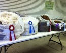 Alpaca fleece competition