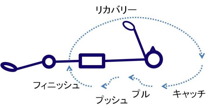 背泳ぎのプルの軌道について
