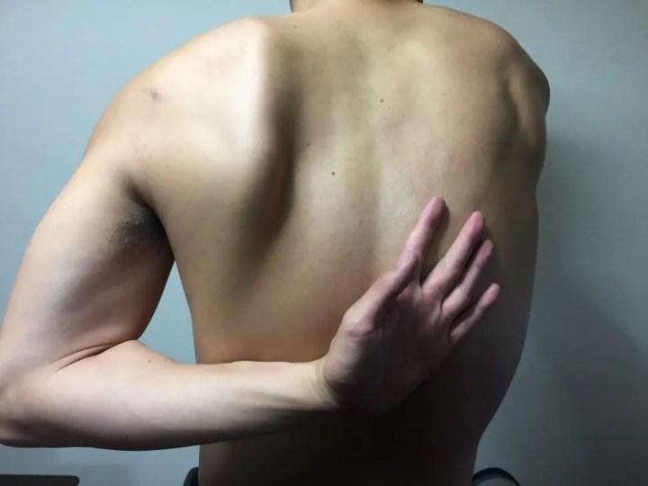 肩甲骨を伸ばす動き