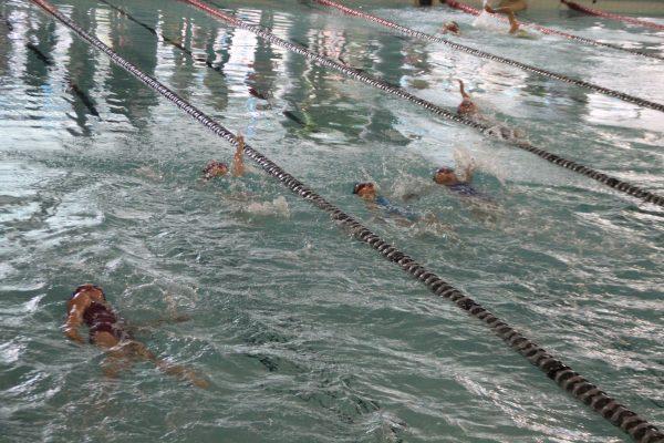 Swim Meet IMG_4224 2015
