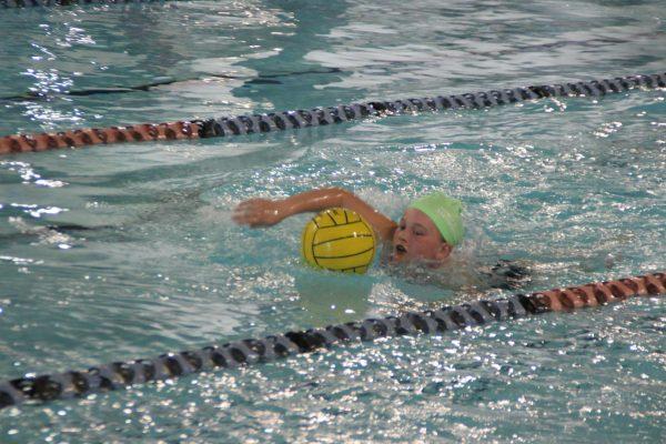 Swim Meet IMG_4398 2015