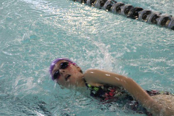 Swim Meet IMG_4404 2015