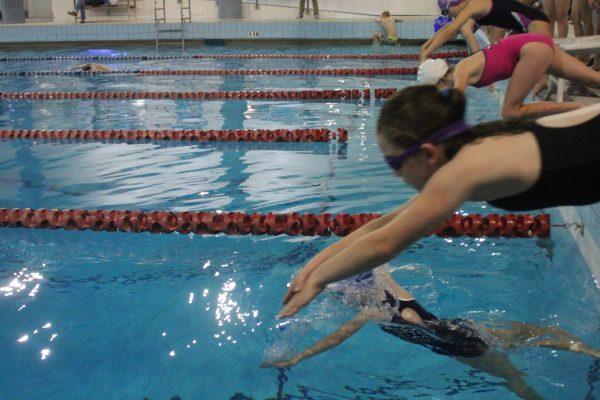 Swim Meet IMG_4408 2015