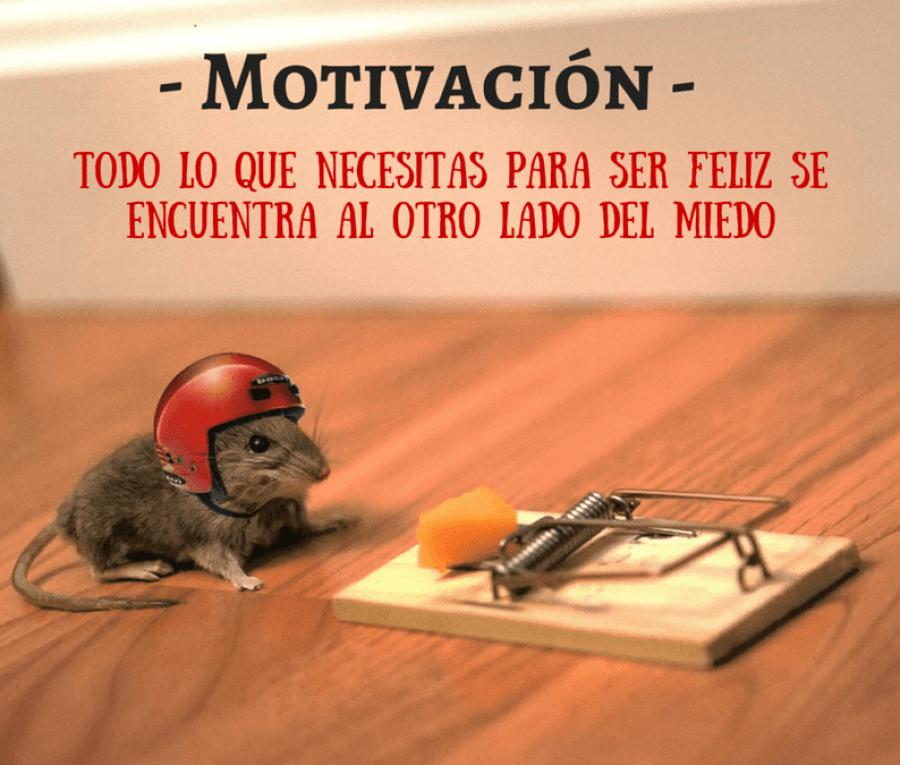 Motivacion triatlon