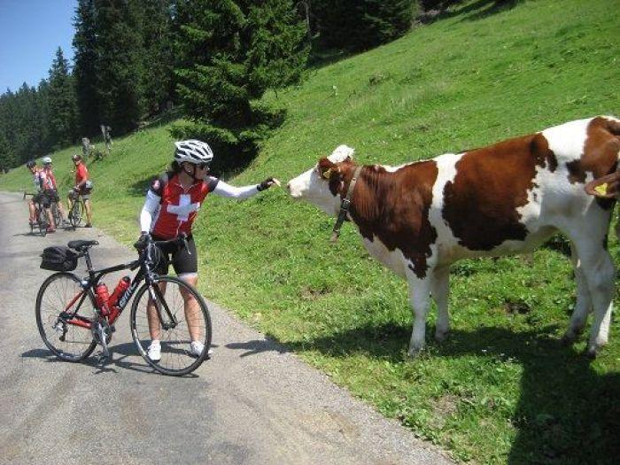 pais con mas bicicletas