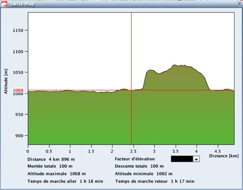 Xterra Suiza run profile
