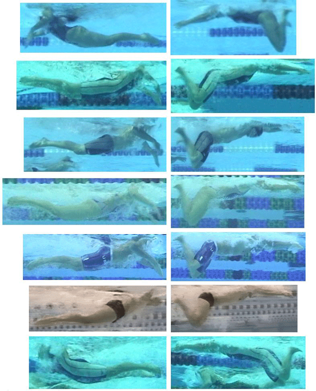 Swim Drill – Breaststroke continued with Land Exercises and Water Drills