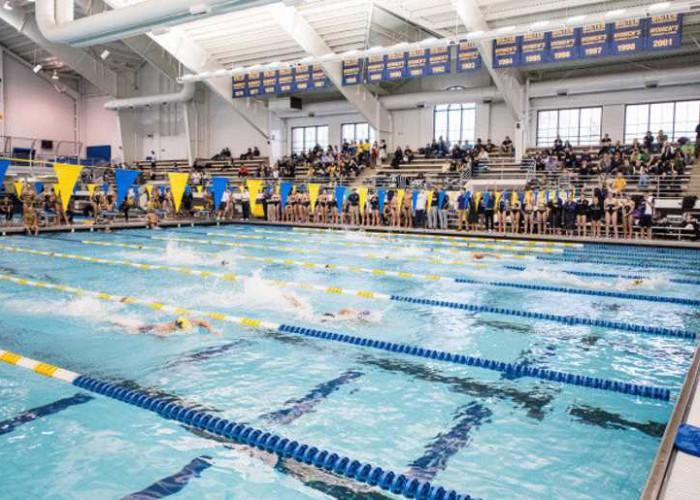 Michigan Swimming and Diving vs. Northwestern and Notre Dame at Canham Natatoriumr in Ann Arbor, MI, on Jan 10, 2015.