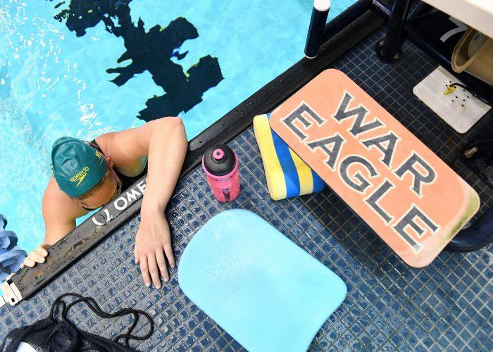 war-eagle-practice-kickboard-pull-bouy