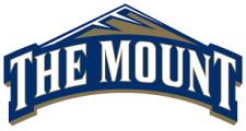 mount-st-mary-logo