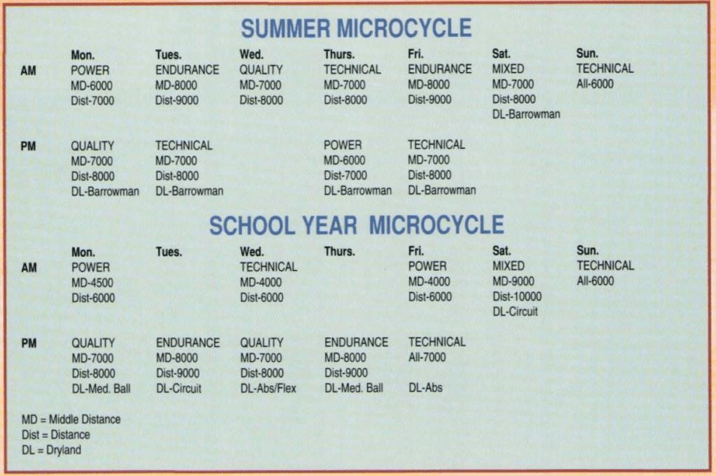 MP - Swimming Tech Macro/Mirco Cycle
