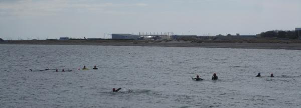 SvømUd 2012