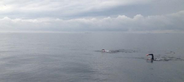 Havblik efter 4 timers svømning