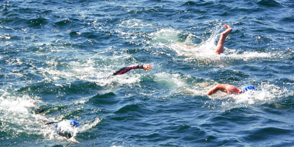 Der svømmes