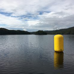open water swim marker buoy