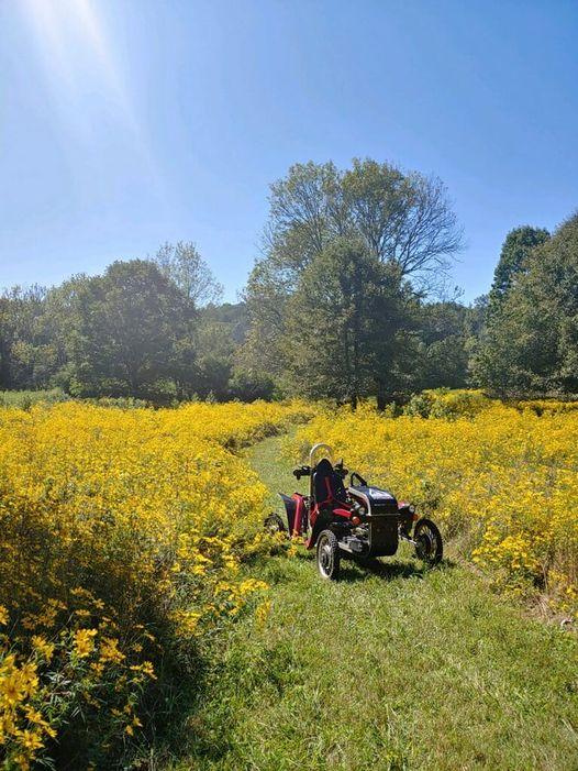 swincar in a flower field