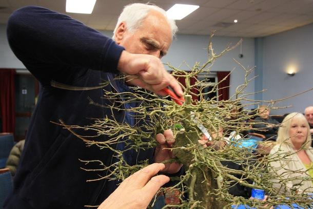 6.Saw pruning
