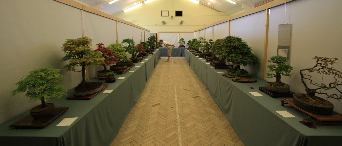 Open competition area
