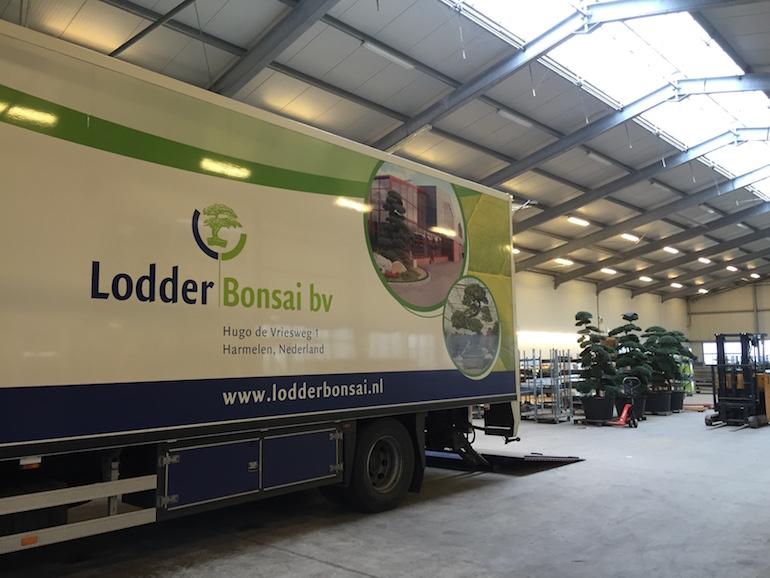 Lodder Bonsai